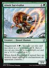 Ainok Survivalist    NM x4 Dragons of Tarkir MTG Magic Cards Green Uncommon