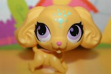 Littlest Pet Shop Figur Hund Spaniel #3093, super niedlich