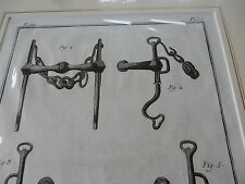 HORSE EQUESTRIAN BITS BRIDLE   amazing mounted 1700s engravings GIFT POTENTIAL d