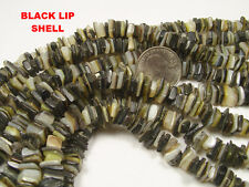 5 STRANDS BLACK LIP SHELL BEADS LOT 16 INCHES (030920166)