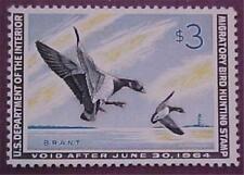 RW30  Federal Duck Stamp 1963 Brant Unused
