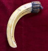 Real Wild Boar Hog Thai Pig Tooth Fang Amulet Power Pendant Teeth Holy Powerful