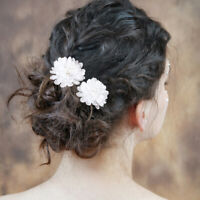 Flower Wedding Decoration Hair Combs Hair Clip Bride Headdress Hairpins