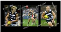 GARY ABLETT Jr GEELONG FC GREAT 3 8x6 LARGE PHOTOS