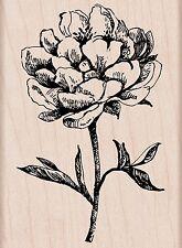 TEA CLASSIC FLOWER Rubber Stamp H5577 Hero Arts Brand NEW! floral leaf stem