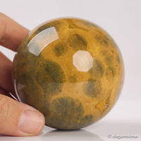 446g 69mm Natural Ocean Jasper Quartz Crystal Sphere Healing Ball Chakra Decor
