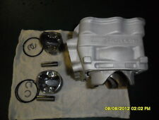 polaris 800 dragon 2010 cylinder piston kit 3022201  3 YEAR WARRANTY