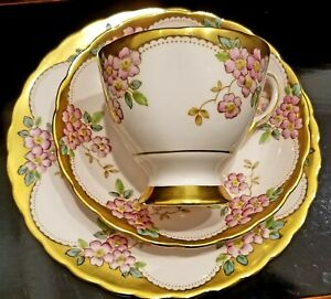 1950s Hand Painted Vintage Tuscan English Bone China Pink Teacup and Saucer