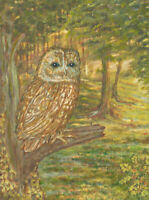 R - 20th Century Oil, Portrait of an Owl in the Woods