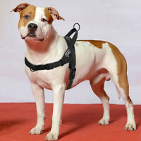 No Pull Front Leading Dog Harness Mesh Padded Nylon Adjustable Labrador Pitbull