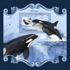 Mozambique 2018 MNH Orcas Killer Whales Seals 1v S/S Marine Animals Stamps