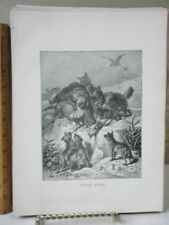 Vintage Print,STRIPED HYENA,Animate Creation,Rev.J.G. Wood,1898
