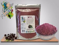ACAI powder 16oz 1lb Natural Superfood anti-aging antioxidant Paradise Powder