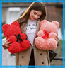 Cute Rose Flower Teddy Bear Foam Bears Home Decorations Valentines' Gift 40cm