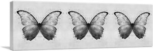 ARTCANVAS Three Black Gray Butterfly Wings Insect Canvas Art Print