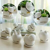 Cow Ceramic Animal Shape Succulent Plant Flower Pot Planter Office Desk Decor
