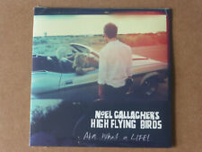 Noel Gallagher's High Flying Birds: AKA...What A Life! (Deleted 2 trk CD Single)
