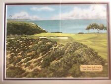 PGA US OPEN Tiger Woods Torrey Pines Framed Artwork 2008 Exclusive