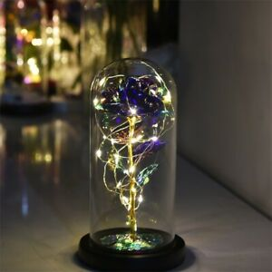 LED Light Enchanted Eternal Flower Rose in Glass Dome Valentine Gift Decors USA