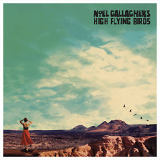 "NOEL GALLAGHER'S HIGH FLYING BIRDS ""WHO BUILT THE MOON?"" PICTURE DISC NEW"