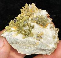 Natural Green Pyromorphite Crystal Cluster on Matrix Mineral Specimen