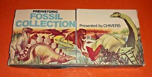 PREHISTORIC FOSSIL COLLECTION PRESENTED BY CHIVERS ~ 1970's