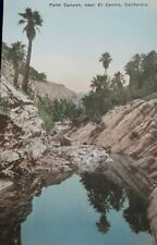 Postcard C.1900's El Centro Ca Palm Canyon Hand Colored