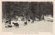 GOOSE BAY LABRADOR, CANADA, HUSKY SLED DOGS ON THE TRAIL,REAL PHOTO PC used 1953