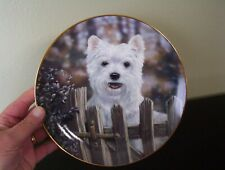 May I Come In? West Highland Terriers Plate Paul Doyle Danbury Mint Charming!