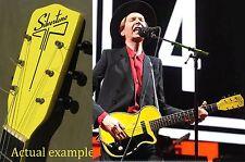 Silvertone H-42 Headstock Decals Waterslide Decal Harmony Newport Guitar