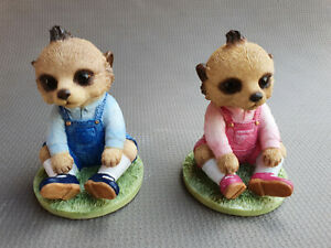 Magnificent Meerkats - Country Artists - Charlotte and Friend CA04535