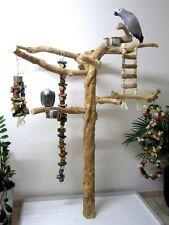 Freisitz, Papageienspielzeug, ORIGINAL Java Holz, Javastamm, Metallumrand,165 cm