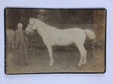 Rare Large Victorian Cabinet Card (CDV): Young Man School Cap With White Horse