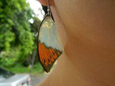 REAL Great Orange Tip Butterfly Wings Earring Jewelry 925 Sterling Hook Stunning