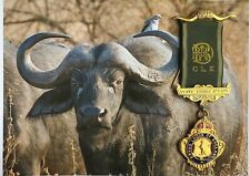 More details for nyati lodge - grand lodge of england masonic medal (south africa)