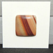 Owyhee Jasper Cabochon 18x18mm with 5.5mm dome from USA (14604)