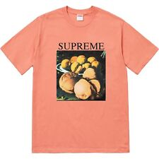 Supreme Still Life Tee T-Shirt Terracotta Medium Size M DS Condition