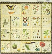 Graphic 45 2 sheets Natures sketchbook collection Diary of a botanist12x12 paper