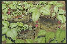 Jersey   2007   Scott # 1258   Mint Never Hinged Souvenir Sheet