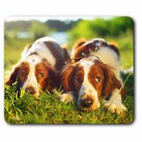 Computer Mouse Mat - Welsh Springer Spaniel Dog Puppy Office Gift #16840