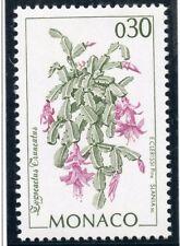 TIMBRE DE MONACO N° 1916 ** FLORE DU JARDIN EXOTIQUE /  Zygocactus truncactus