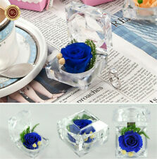 Creative Gift Preserved Fresh Flower Ring Box Eternal Natural Flower Blue Rose