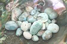 One Larimar Dolphin Tumbled Stone 20mm Healing Crystal Pregnancy Depression Calm