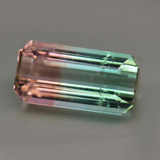 16.82ct.RARE GEMSTONE BI COLOR TOURMALINE OCTAGON CUT NATURAL GEMSTONE UNHEATED