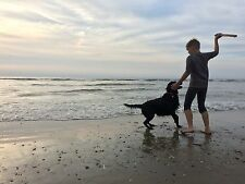 DÄNEMARK mit Hund, 1A Ferienhaus, Internet, Pool, PS5, TV, Strand, Angeln, Golf