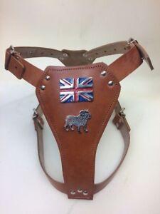 British Bulldog leather dog harness
