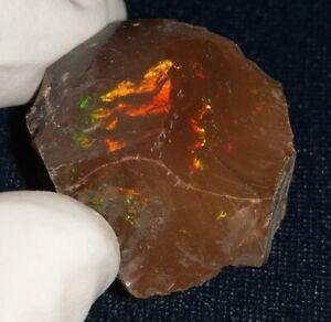 51.5 Carat Ethiopian Chocolate Shewa Rough Opal #5160806006