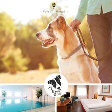 3 Tage Städtereise München | Urlaub mit Hund | 4★ Wellness Hotel inkl. Abendmenü