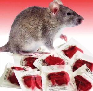 This Stuff Really Works 25 Packs 250 Grams Rodent Rat Mice Poison #1 Best Seller