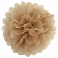 100pcs Wedding Party Baby Shower Outdoor Decor Tissue Paper Pom Poms Flower Ball